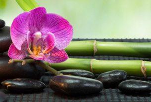 thai massage head ear face top