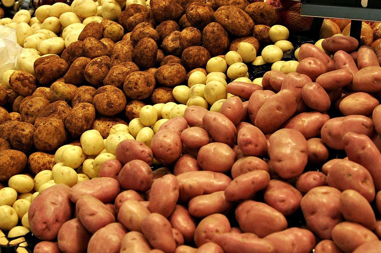 potatoes help overcome obesity